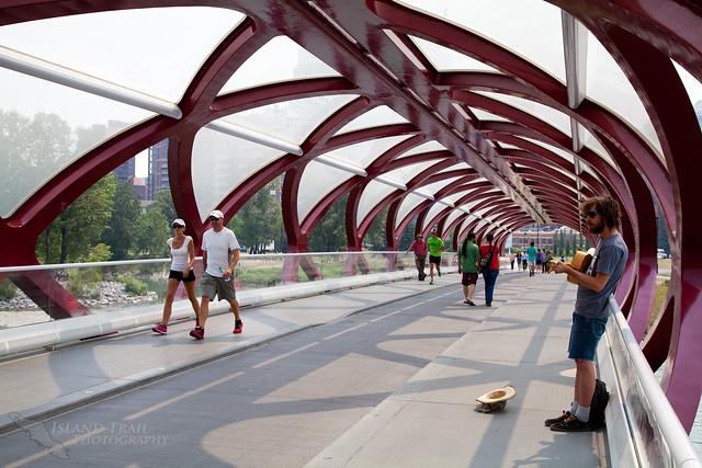 Calgary - 2014-07-17-6507