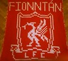 Liverpool blanket for Fionntan