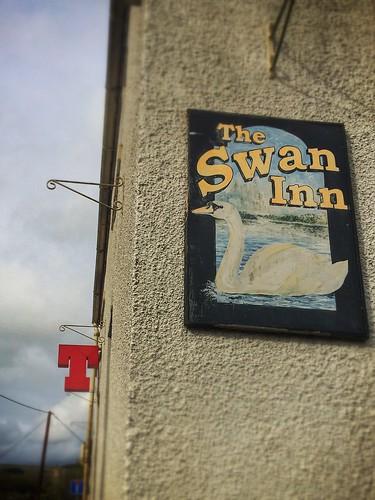 The Swann