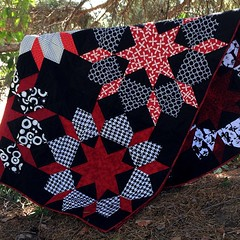 Swoon quilt for #dogoodstitches #humilitycircle