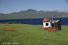 Austfirðir21-25072014_116