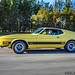 Ford Mustang Mach-1 ´73