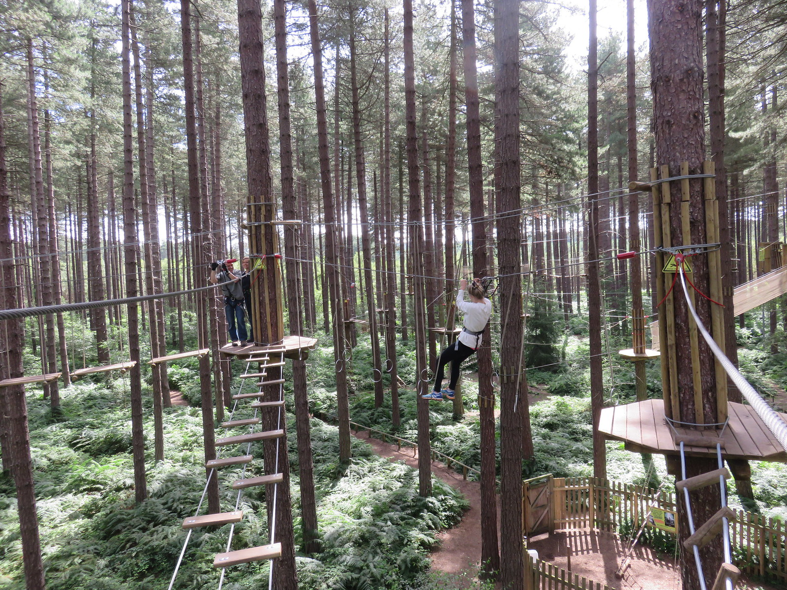 Go Ape Tree Top Adventure (A)