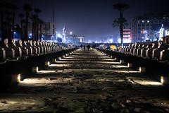 Sphinx Avenue - Luxor