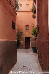 Marrakech 5395