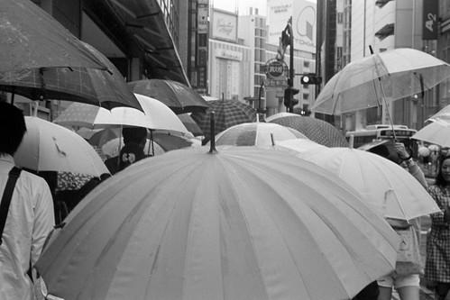 umbrella garden