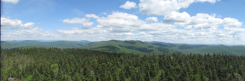 View from Balsam Lake Mountain
