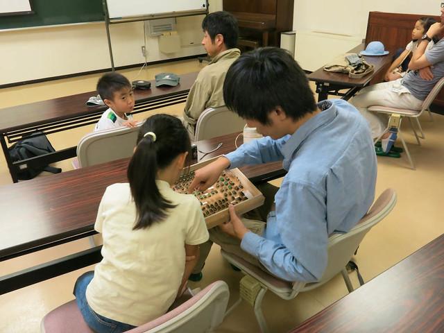 「ブッポウソウが食べる昆虫」の標本を,松田先生が持ってきて下さった.