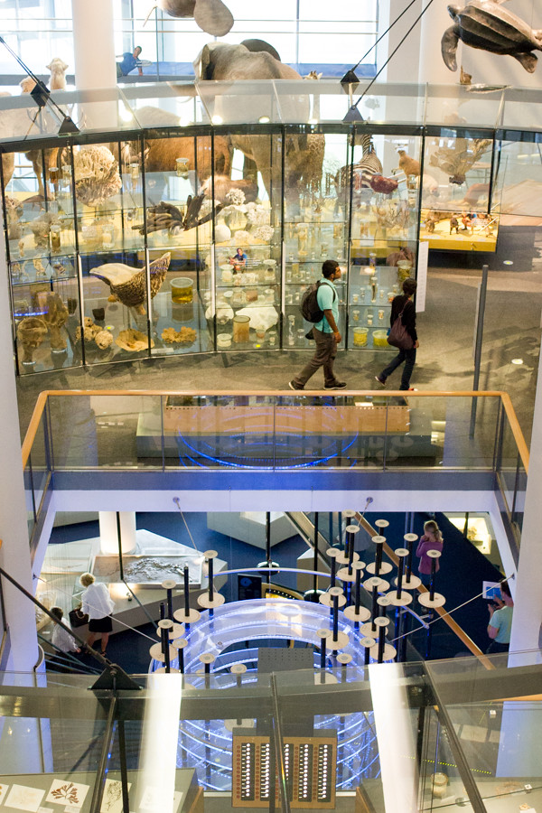 naturalis_leiden_dreamdaily (7 of 12)