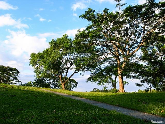 Photo:藍天、綠地、斜陽 By lscott200