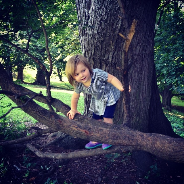 She wanted to climb trees today.