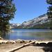 Idyllischer Yosemite