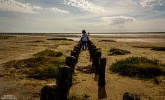 No mather how big the world is, we must choose a path of our own (Denmark #21 Mandø, Wadden Sea National Park)