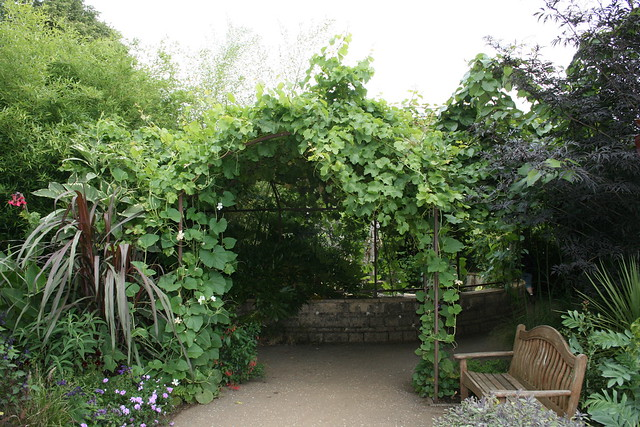 Edible archway
