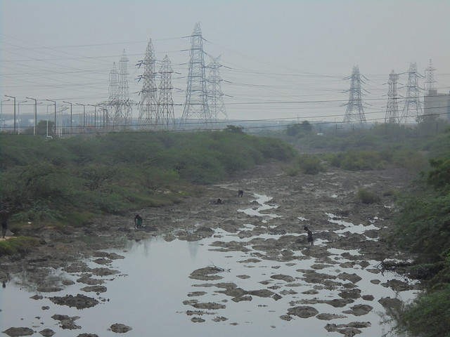 The Buckingham canal is an important source of livelihood for people in the area. But ash being dumped into the canal has severely contaminated it. People however continue to fish there, unaware.