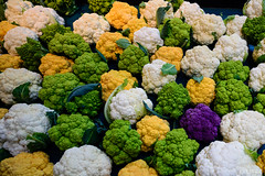 flower(0.0), broccoli(1.0), vegetable(1.0), cruciferous vegetables(1.0), produce(1.0), food(1.0),