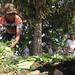 Beras Organik Mbay