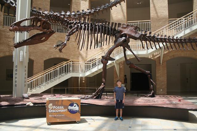 FernbankNaturalHistoryMuseum-Atlanta2014 - 19