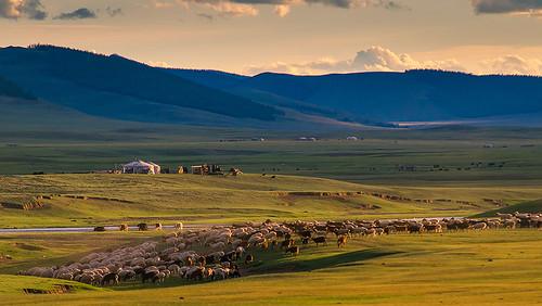 sunset beautiful sum mongolian arkhangai монгол сум гэр нар монголын сайхан архангай мал хонь баярсайхан tusgal орон айл талын tamirglz tamiglz тамир тусгал өндөрулаан жаргалт undurulaan