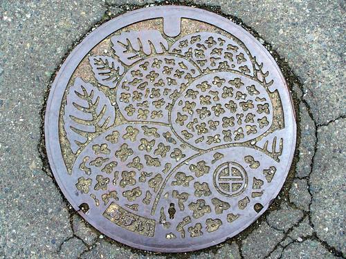 Kaminaka Fukui, manhole cover (福井県上中町マンホール)
