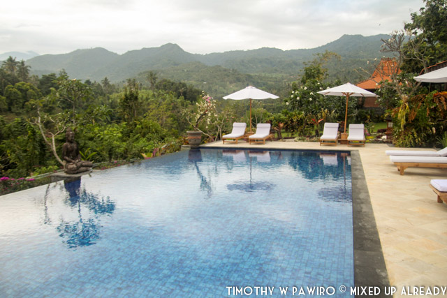 Bali - Shanti Natural Panorama View - The swimming pool (01)