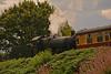DSC_0287 Severn Vally Railway Steam Loco