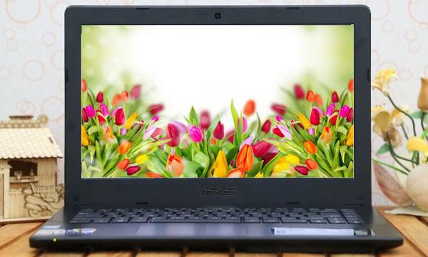 P450LAV laptop doanh nhân dành cho sinh viên - 31760