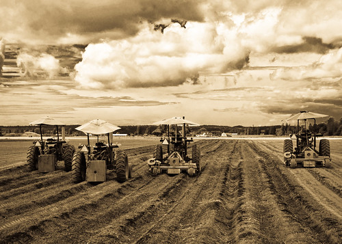 08-25-14 Preparing the Fields