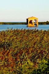 Il delta del Po-The River Po Delta