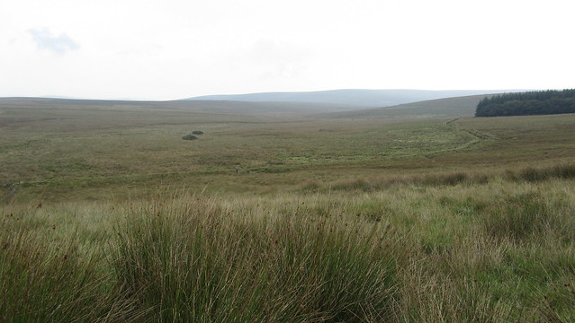 The challenging terrain we tackled from Strane Tor to the road near Tor Royal!