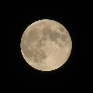 ネタだけではアレなので、デジカメでも #スーパームーン を撮影してる。昨日は32倍だが、今日は48倍で撮影したので、大きく映ってしまった。 #moon