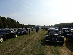 80 Jahre Citroen Traction Avant 2014 La Ferte-Vidame 499a