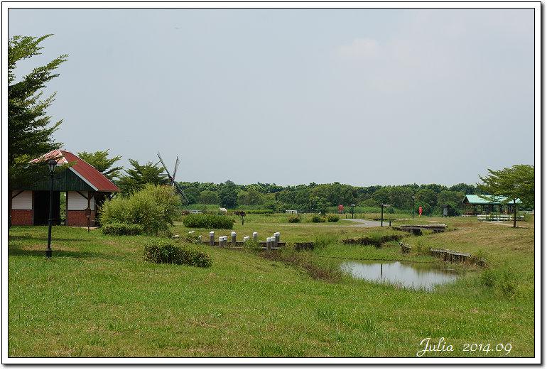 荷蘭村 (4)