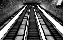 Linea 1 Metro Napoli - Stazione Toledo #1