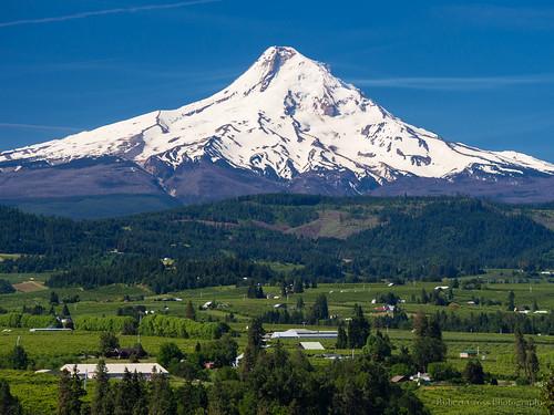 mountain oregon landscape volcano bluesky olympus mthood tolkien hoodriver omd orchards cascaderange em5 40150mmf456mzuiko