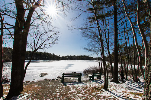2017 canada frogpond landscape march novascotia sirsandfordflemingpark daytime nature outdoor park scenery winter halifax