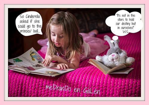 4- Reading