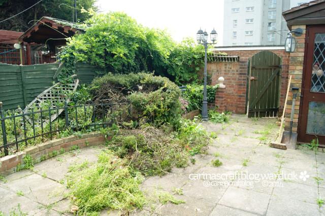 Our garden 01