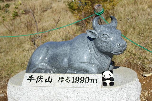 20131102_美ヶ原_0028