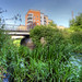 thumbnail photo in photoset The River Ravensbourne