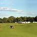 Battle of Gettysburg Reenactment 2014 by rosemont