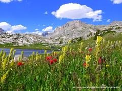 Fremont Peak Campsite-Wind River Range