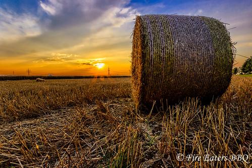 Strohballen bei Sonnenuntergang