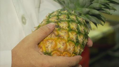 自經區能為鳳梨酥加工廠商創造更高利益