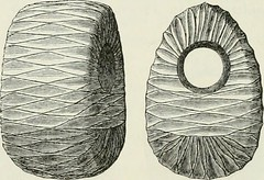 "Image from page 221 of ""The ancient stone implements, weapons, and ornaments, of Great Britain"" (1872)"