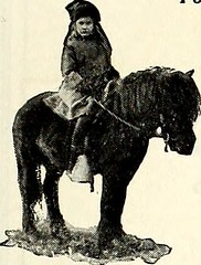 "Image from page 560 of ""St. Nicholas [serial]"" (1873)"