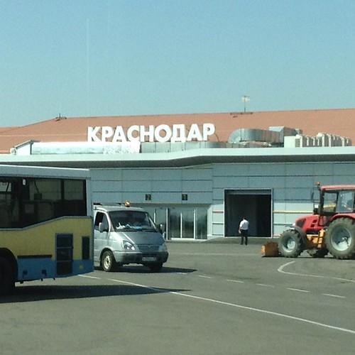 Приземлились! Здравствуй, Кубань, тут жарче, чем в Крыму))) #краснодар