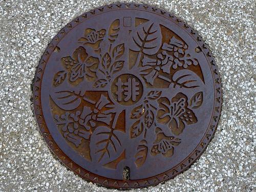 Nanto Toyama, manhole cover (富山県南砺市のマンホール)