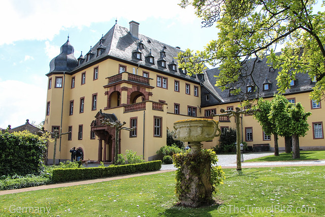 Rheingau Wine Region Germany-30