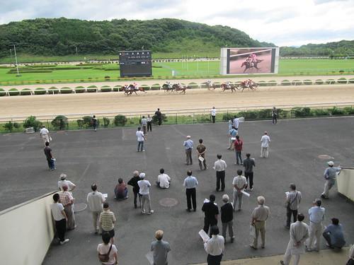 佐賀競馬場のレースを眺める人々